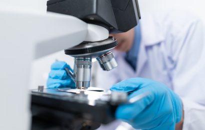 Neutrófilos bajos: síntomas, causas y tratamiento