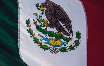 Organización social, política y económica de los Olmecas